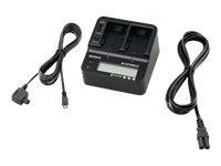 Sony AC-VQV10 - Batterieladegerät / Stromadapter - 2.2 A - für Sony DEV-30; Handycam FDR-AX30, HDR-CX370, CX420, CX480, CX590, C