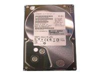 HP - Festplatte - 2 TB - intern - SATA 6Gb/s - 7200 rpm