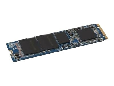 Dell - Solid-State-Disk - 256 GB - intern - M.2 - PCI Express (NVMe)