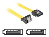 DeLOCK - SATA-Kabel - Serial ATA 150/300 - SATA (W) bis SATA (W) - 50 cm - nach unten gewinkelter Stecker, eingerastet, gerader