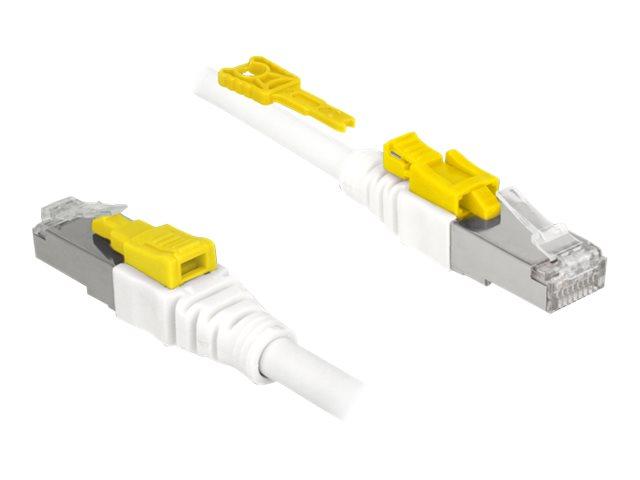 DeLOCK Secure - Patch-Kabel - RJ-45 (M) bis RJ-45 (M) - 3 m - STP - CAT 6a