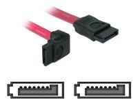 DeLOCK - SATA-Kabel - Serial ATA 150/300 - SATA (W) bis SATA (W) - 30 cm - nach oben gewinkelter Stecker, gerader Stecker