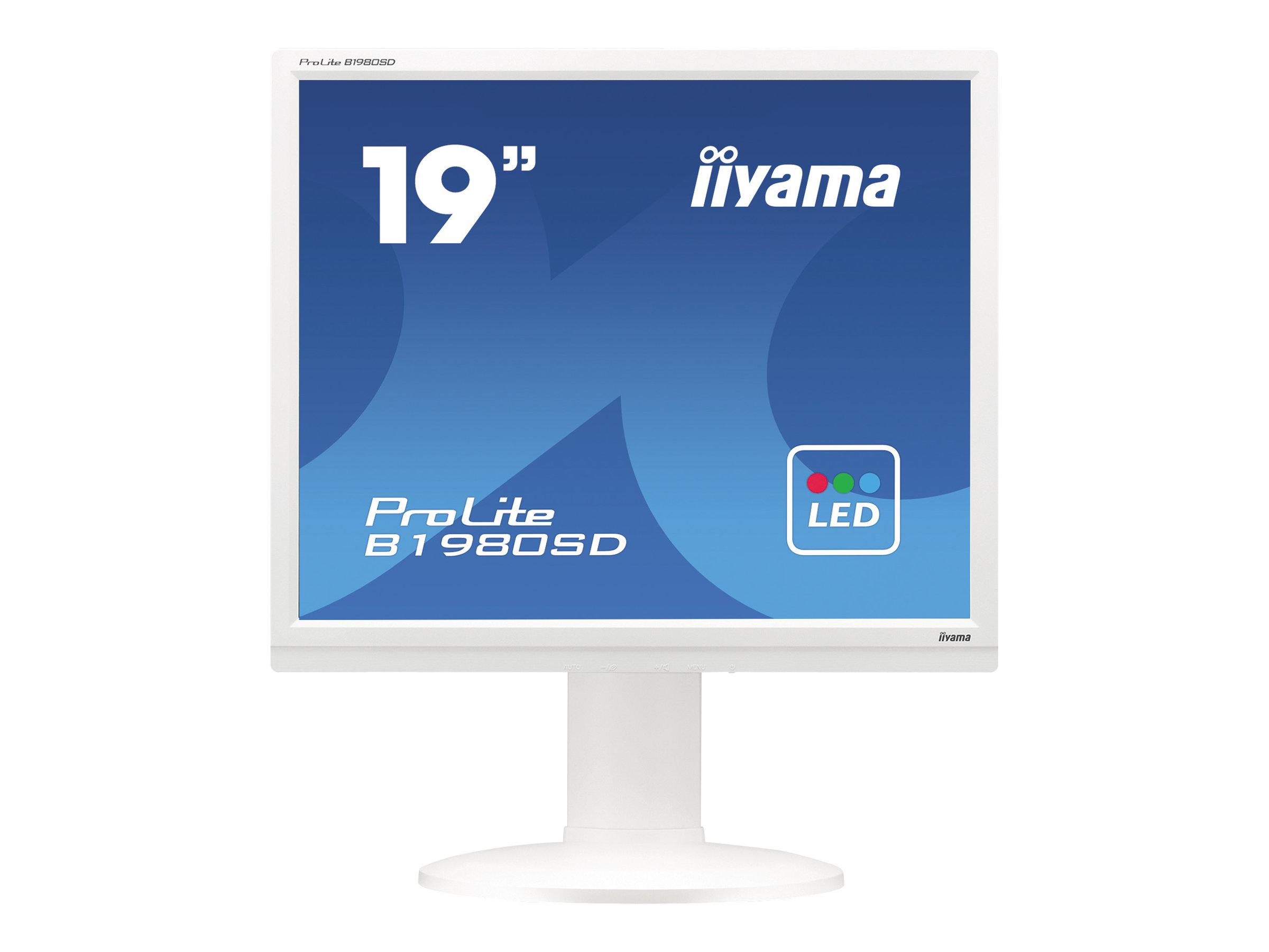 iiyama ProLite B1980SD-W1 - LED-Monitor - 48.3 cm (19