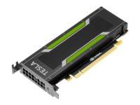 NVIDIA Tesla P4 - GPU-Rechenprozessor - Tesla P4 - 8 GB GDDR5 - PCIe 3.0 x16 Low-Profile - ohne Lüfter