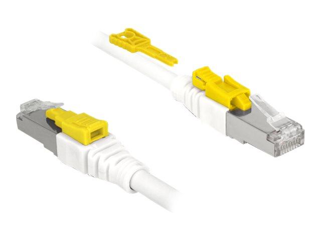 DeLOCK Secure - Patch-Kabel - RJ-45 (M) bis RJ-45 (M) - 1 m - STP - CAT 6a