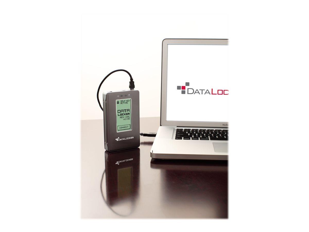 DataLocker DL2 - Festplatte - verschlüsselt - 2 TB - extern (tragbar) - USB 2.0
