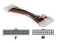 DeLOCK - Netzteil - ATX, 24-polig (W) bis ATX, 20-polig (M) - 15 cm