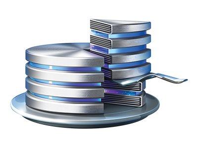Acronis Disk Director Workstation - (v. 12.5) - Lizenz + 1 Year Advantage Standard - 1 PC - ESD - Win