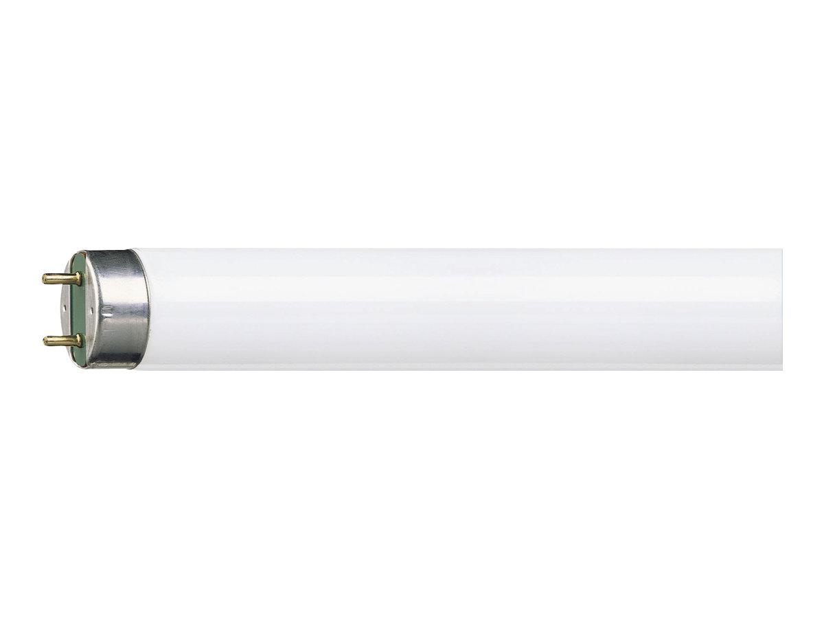 Philips MASTER TL-D Super 80 - Fluoreszierende Glühlampe - Form: T8 - G13 - 36 W - Klasse A