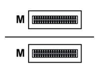 Arista - 40GBase-AOC Direktanschlusskabel - QSFP+ (M) bis QSFP+ (M) - 5 m - Glasfaser
