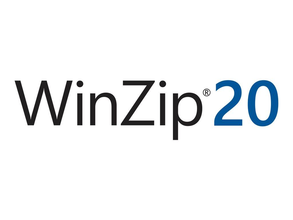 WinZip Standard - (v. 20) - Upgrade-Lizenz - 1 Benutzer - CLP - Level J (5000-9999)