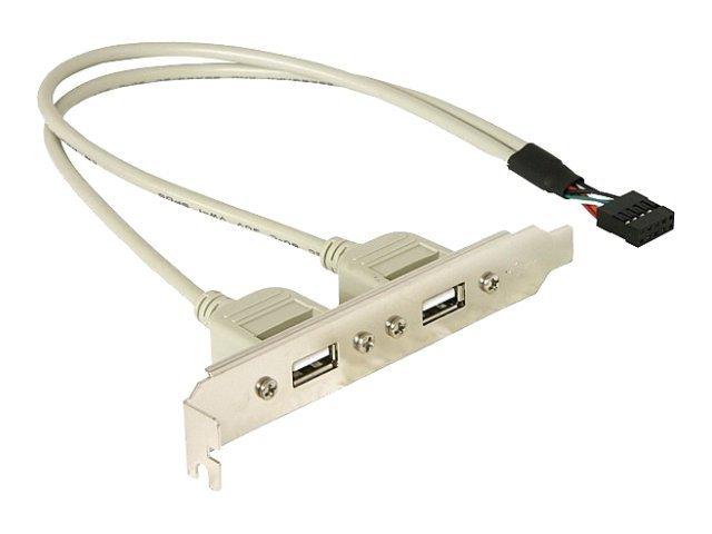 DeLOCK - USB-Konsole - 10-poliger USB-Header (M) bis USB (W) - 30 cm