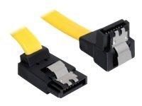 DeLOCK Cable SATA - SATA-Kabel - Serial ATA 150/300/600 - SATA (W) bis SATA (W) - 20 cm - nach unten gewinkelter Stecker, einger