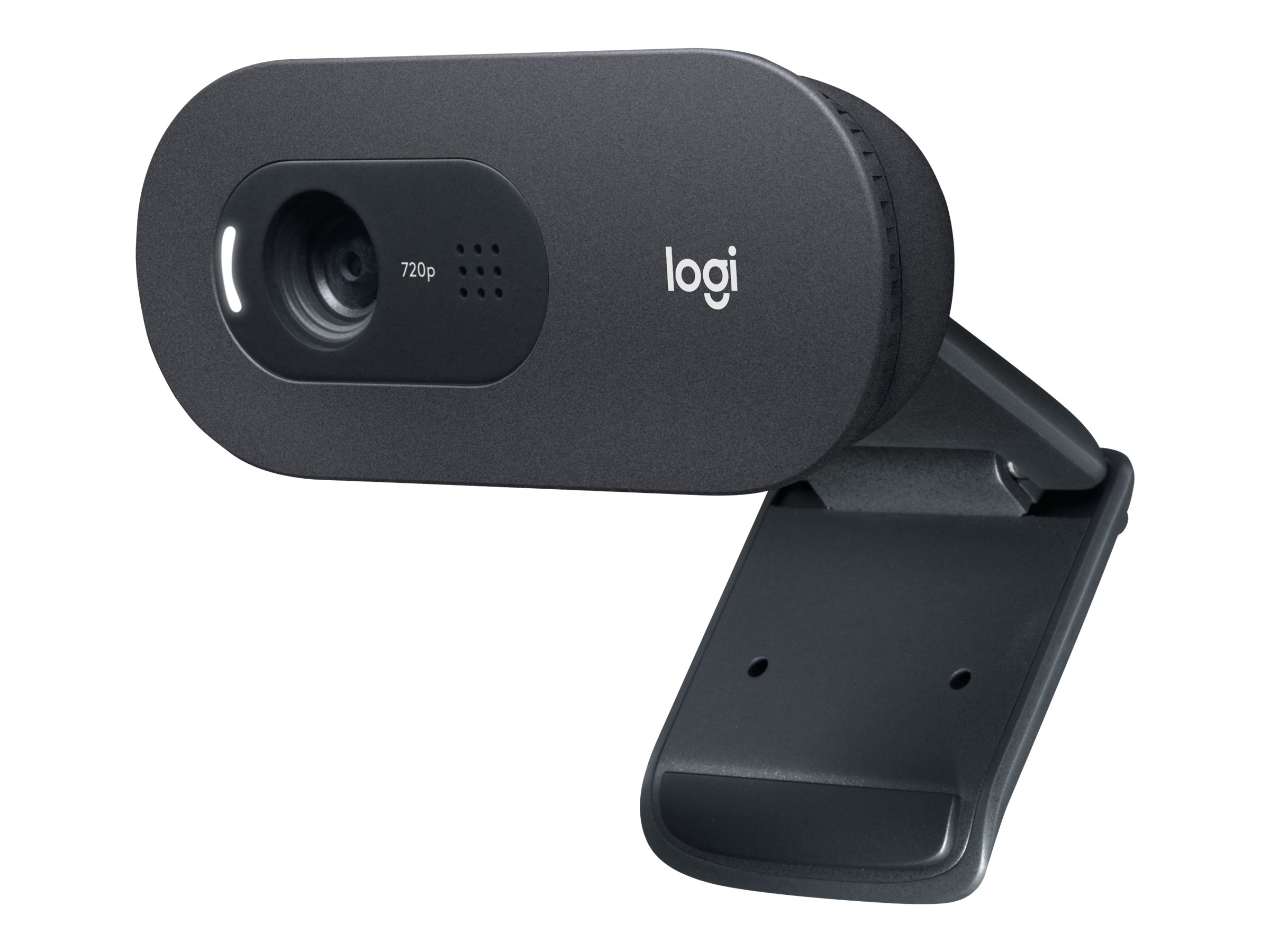 Logitech C505 - Web-Kamera - Farbe - 720p - feste Brennweite - Audio