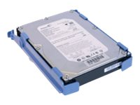 Origin Storage - Festplatte - 3 TB - 3.5