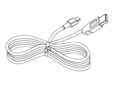 Citizen - Druckerkabel - Mini-USB, Typ B (M) bis USB (M) - für Citizen CMP-20, CMP-30