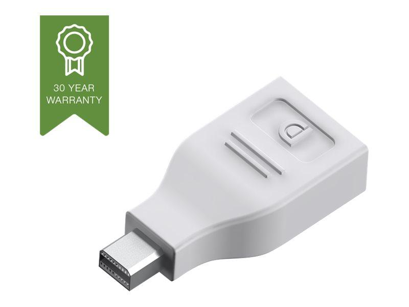 Vision Techconnect - DisplayPort-Adapter - DisplayPort (W) bis Mini DisplayPort (M) - weiss