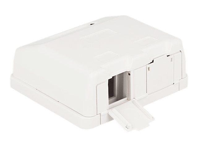 DeLOCK Keystone Surface Mounted Box - Gehäuse mit modularen Einsätzen - weiss - 2 Ports