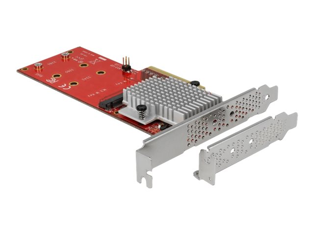 DeLOCK PCI Express Card > 2 x internal M.2 - Schnittstellenadapter - M.2 Card Low-Profile - PCIe 3.0 x8