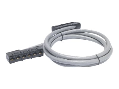APC Data Distribution Cable - Netzwerkkabel - RJ-45 (W) bis RJ-45 (W) - 21 m - UTP - CAT 5e