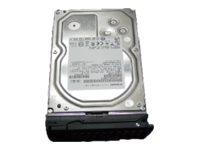 NETGEAR - Festplatte - 8 TB - Hot-Swap - 3.5