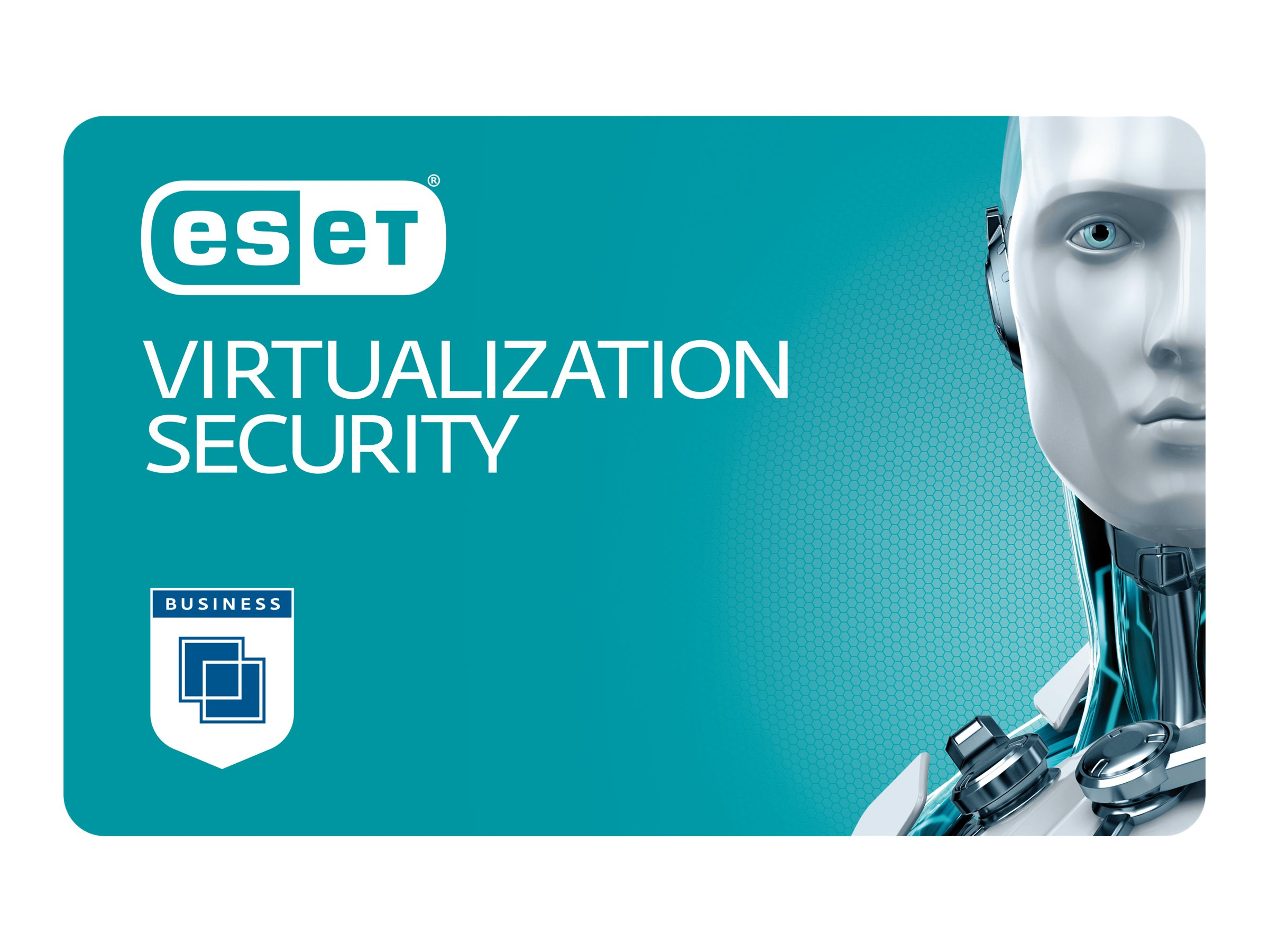 ESET Virtualization Security - Abonnement-Lizenz (3 Jahre) - 1 virtuelle Maschine - Volumen - 250-499 Lizenzen