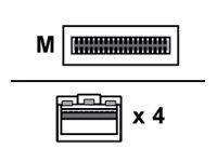 Arista - 10GBase Direktanschlusskabel - QSFP+ (M) bis SFP+ (M) - 5 m - twinaxial
