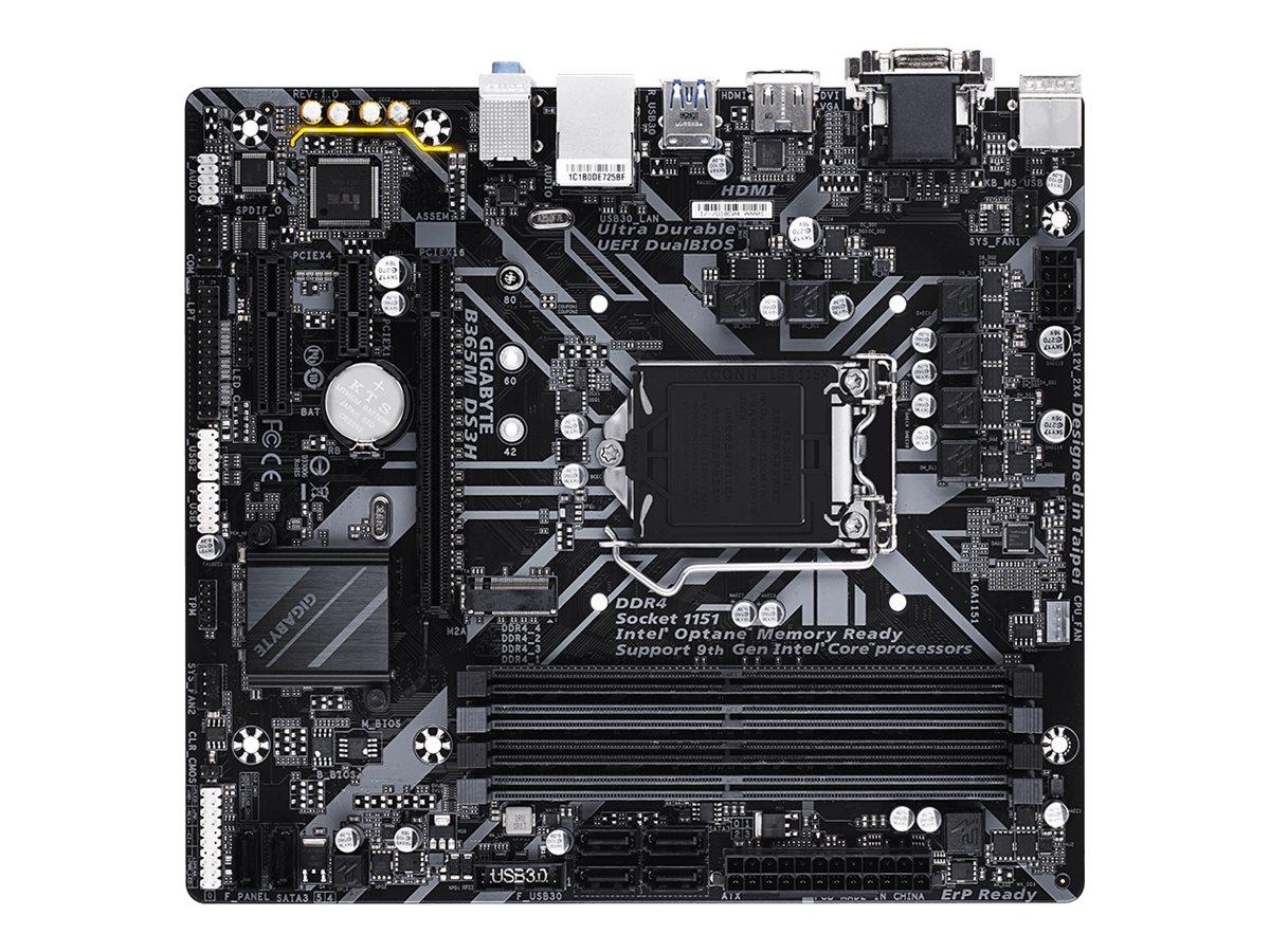 Gigabyte B365M DS3H - 1.0 - Motherboard - micro ATX - LGA1151 Socket - B365