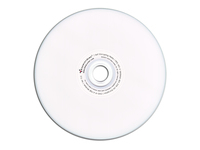 DataLocker SecureDisk - 100 x DVD-R - 4.7 GB 16x
