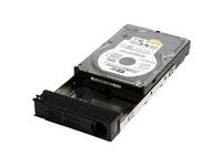 Fujitsu - Festplatte - 3 TB - Hot-Swap - SATA 3Gb/s - für Celsius M470, M720, R570, R920; ESPRIMO E510, E710, E910, Q510, Q910;