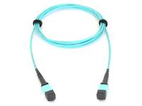 Allied Telesis AT-MTP12-5 - Netzwerkkabel - MTP bis MTP - 5 m - Glasfaser