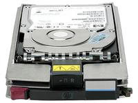 HPE - Festplatte - 1 TB - Hot-Swap - FATA - 7200 rpm